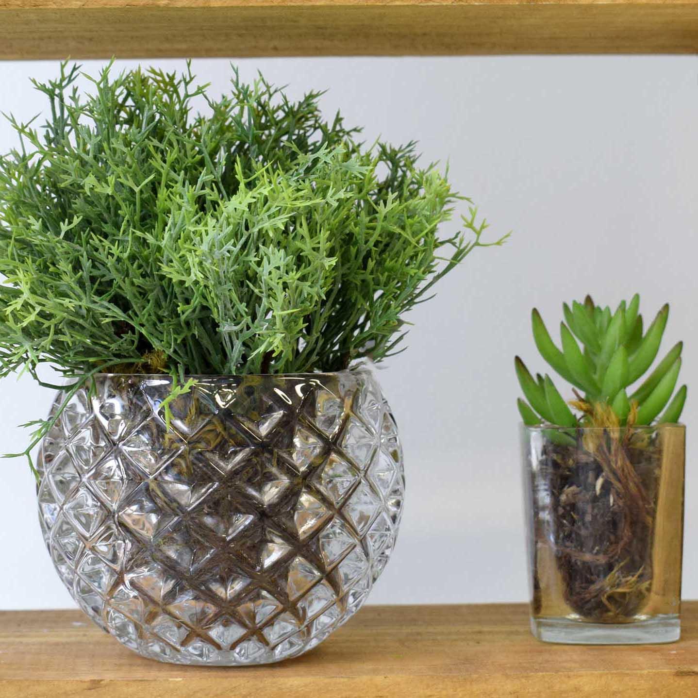 Flores artificiais Arranjo de Mini Suculenta no Vaso de Vidro|Linha permanente Formosinha