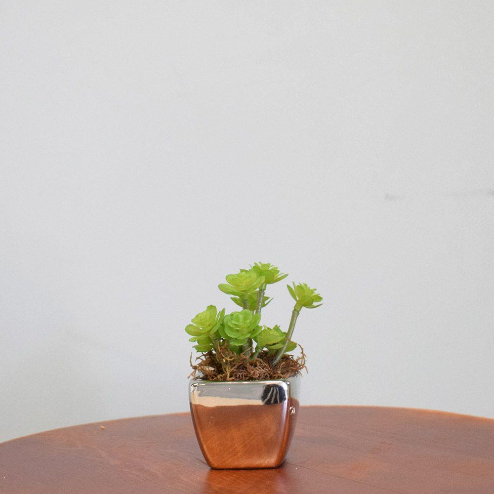 Arranjo de Mini Suculenta no Vaso Prateado|Linha Permanente Formosinha