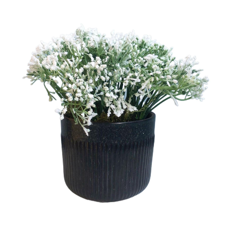Arranjo De Mosquitinho Branco No Vaso Preto| Linha Permanente Formosinha