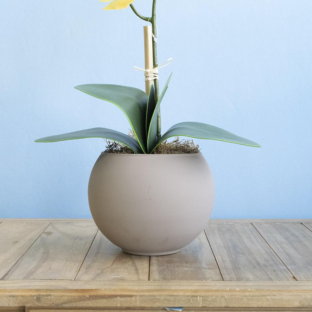 Arranjo de Orquídea Amarela de Silicone no Vaso de Vidro Fendi Fosco Médio | Linha Permanente Formosinha