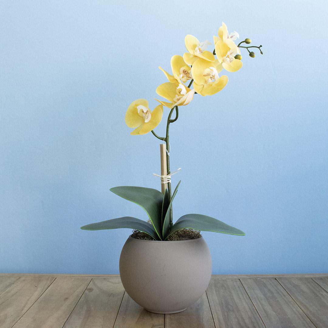 Arranjo de Orquídea Amarela de Silicone no Vaso Fendi | Formosinha