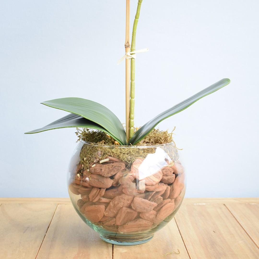 Arranjo de Orquídea Artificial Tigre no Vaso Transparente Pequeno | Linha Permanente Formosinha