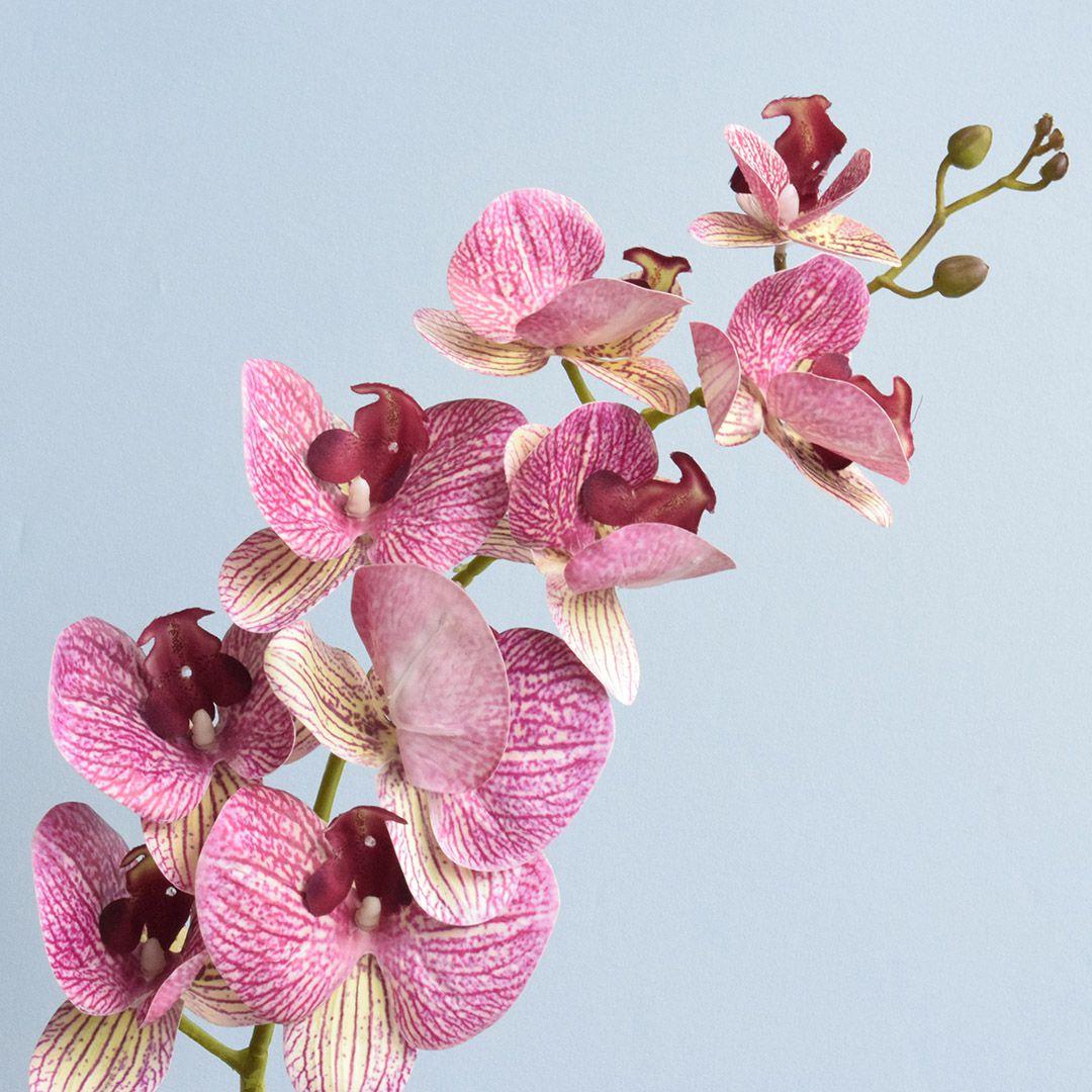 Arranjo de Orquídea Artificial Rosa 3D no Vaso de Vidro Rose Gold Médio