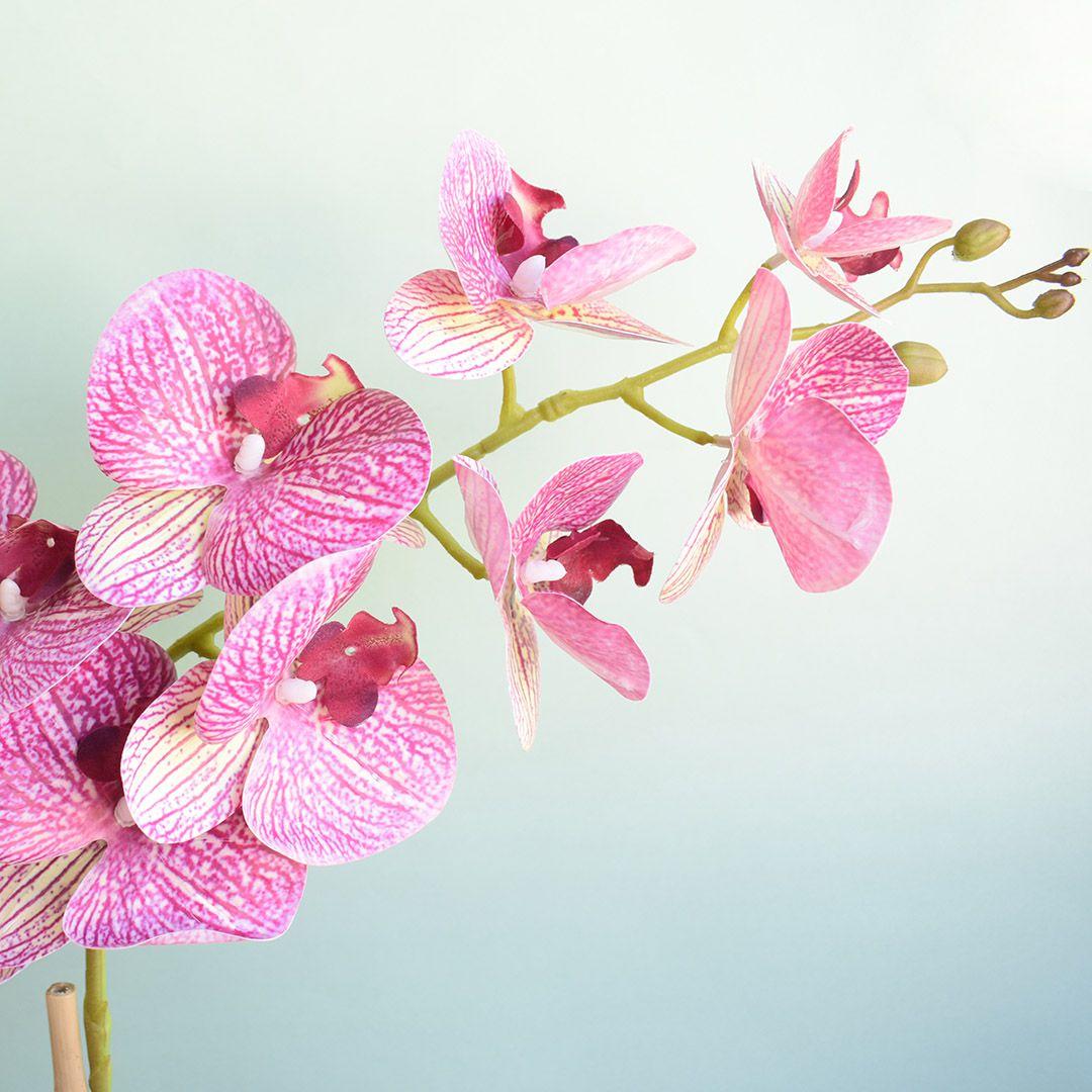 Arranjo de Orquídea Artificial Rosa no Vaso Vidro Transparente | Linha Permanente Formosinha