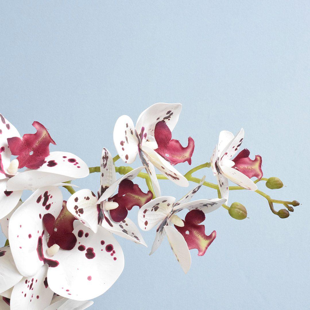 Arranjo de Orquídea Artificial Tigre 3D no Vaso de Vidro Bronze Médio