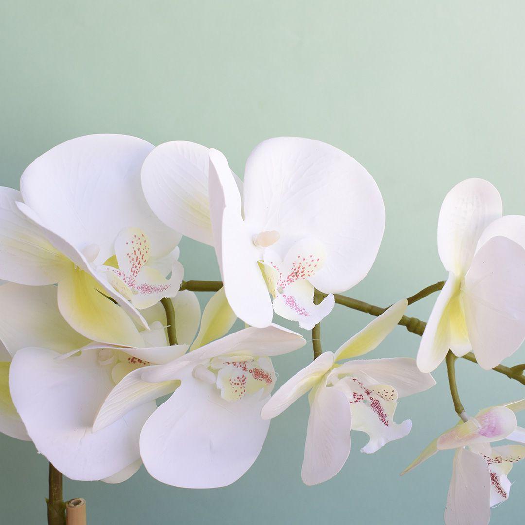 Arranjo de Orquídea Branca de Silicone no Vaso Vidro Transparente | Linha Permanente Formosinha