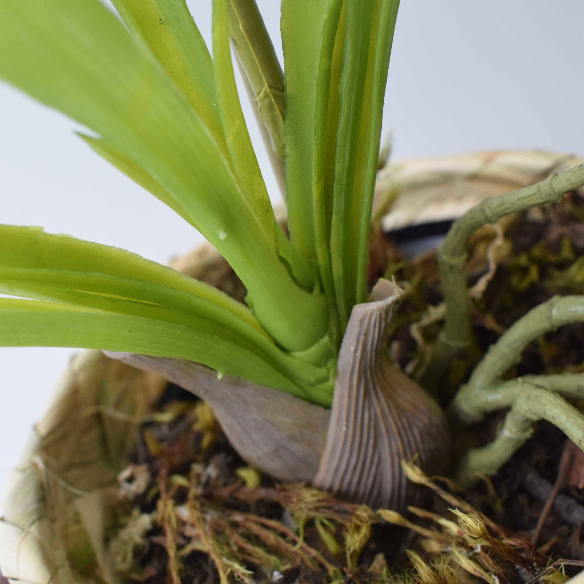 Arranjo de Orquídea de Silicone no Vaso de Sisal