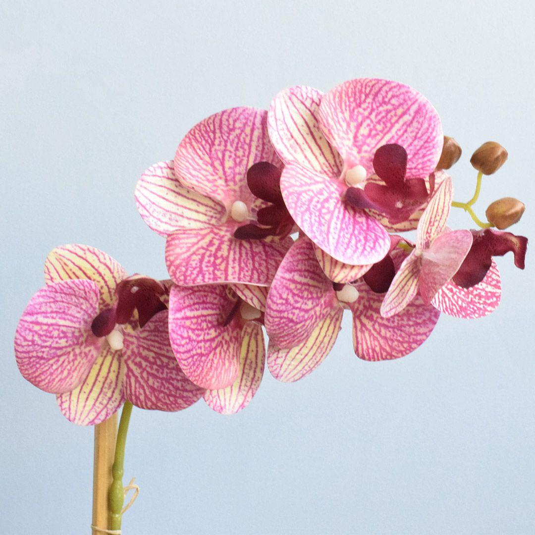 Arranjo de Orquídea Rosa 3D no Vaso Rose Gold Pequeno | Linha Permanente Formosinha