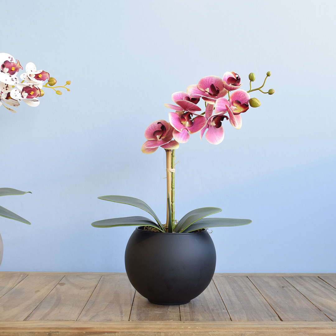 Arranjo de Orquídea Rosa Artificial no Vaso de Vidro Preto Fosco | Linha permanente Formosinha