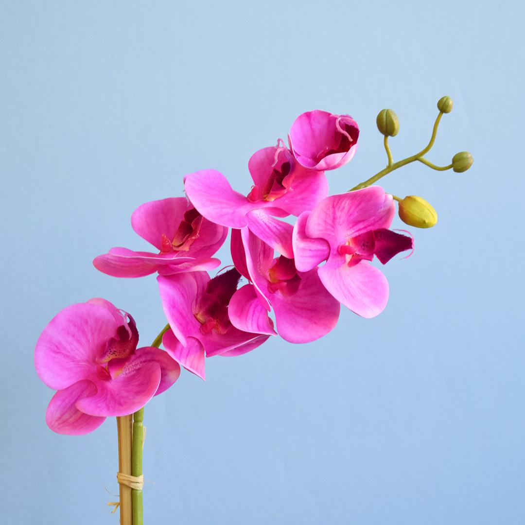 Arranjo de Orquídea Rosa Pink Artificial no Vaso de Vidro Fendi