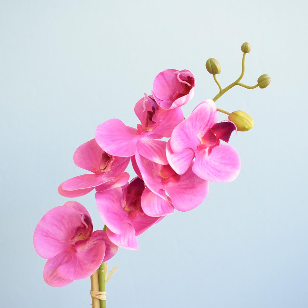Arranjo de Orquídea Rosa Pink Artificial no Vaso de Vidro Preto Fosco | Linha permanente Formosinha