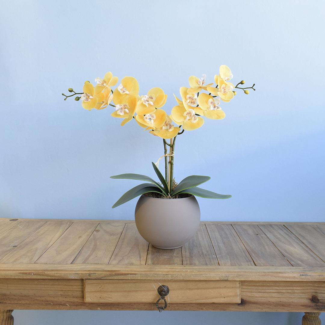 Arranjo de Orquídeas Amarelas de Silicone no Vaso de Vidro Fendi Fosco Médio | Linha Permanente Formosinha