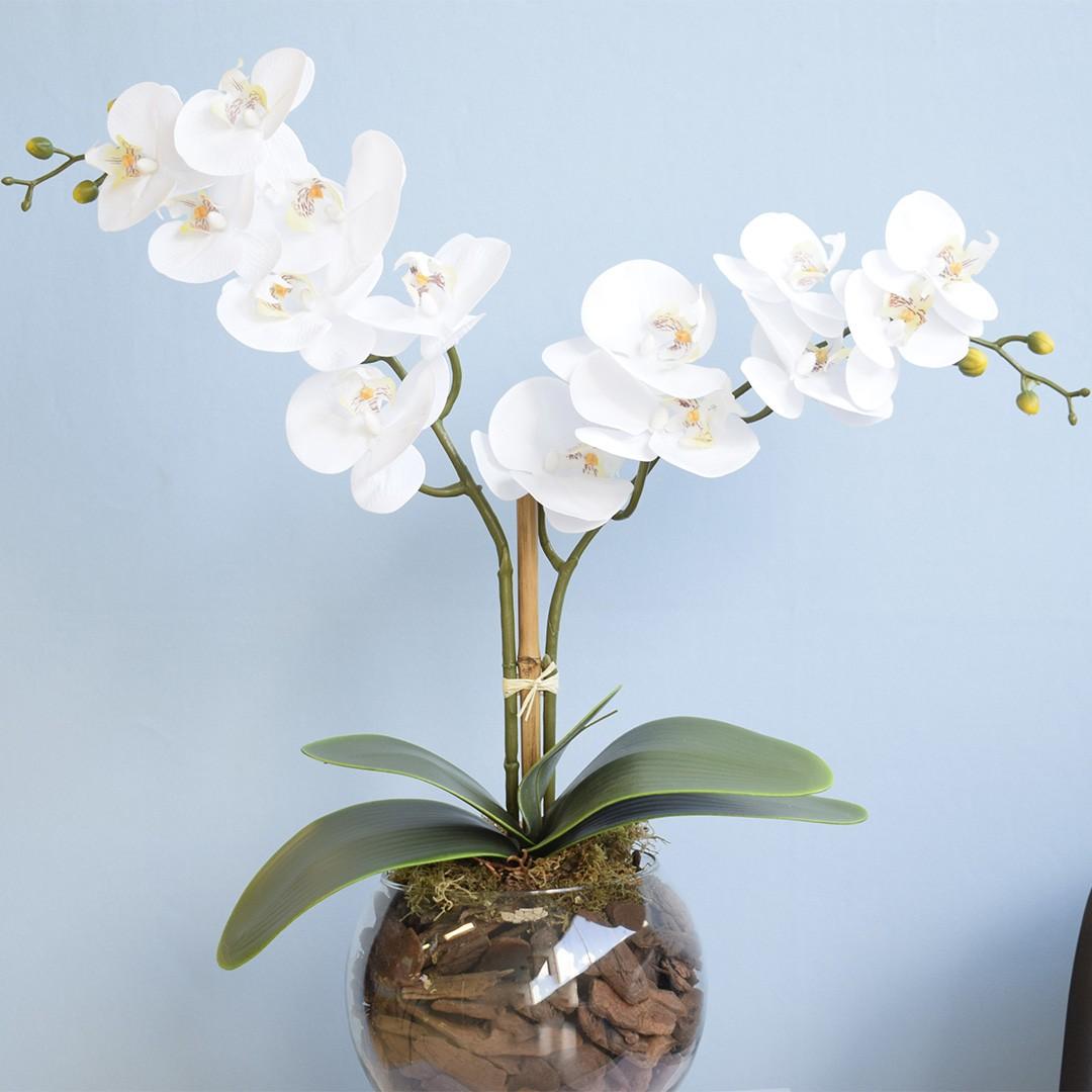 Arranjo de Orquídeas Brancas Toque Real no Vaso Transparente Médio | Linha Permanente Formosinha