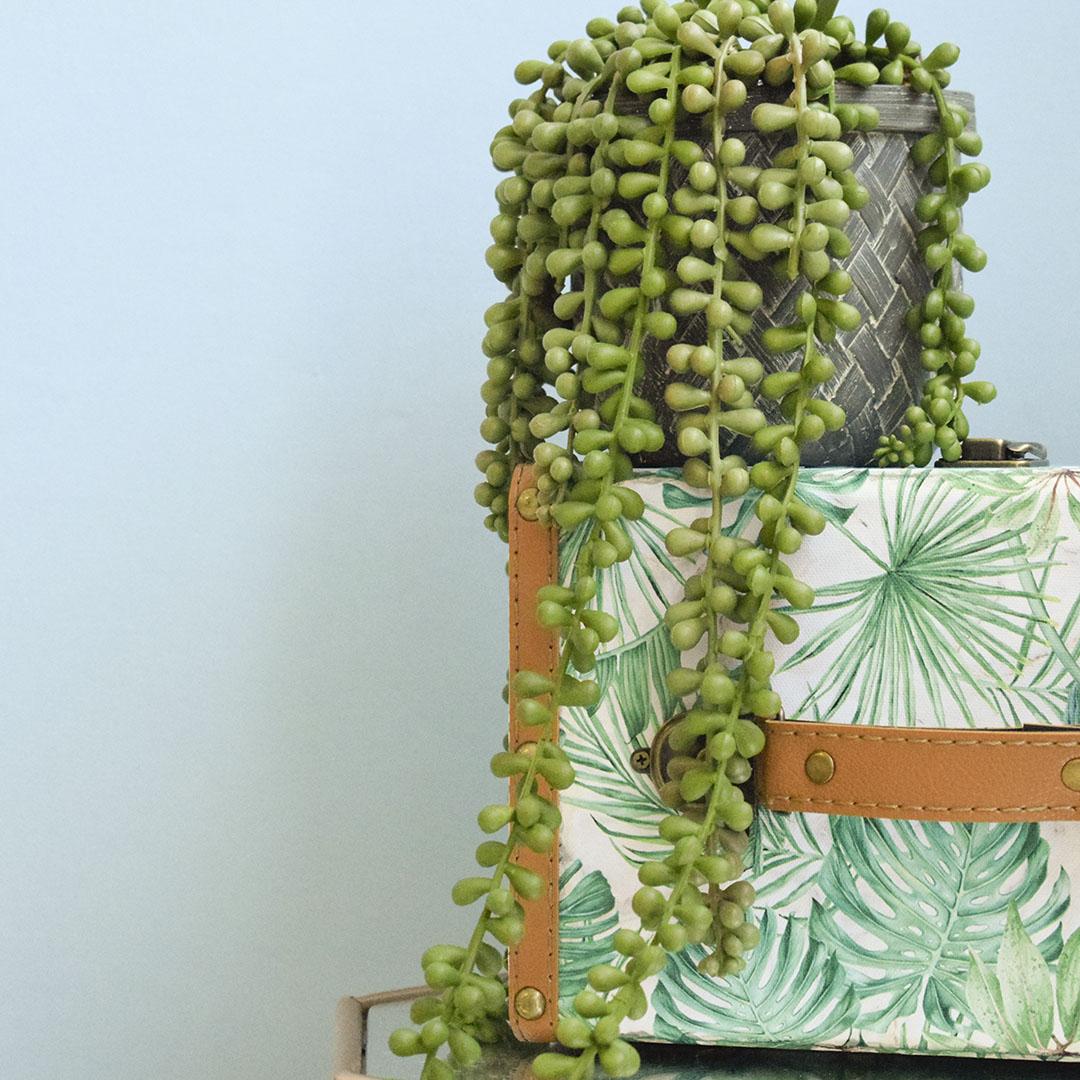 Arranjo de Planta Pendente Artificial no Vaso Cimento | Formosinha