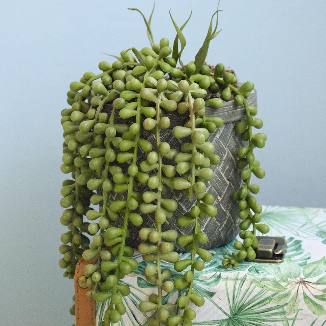 Arranjo de Planta Pendente Artificial no Vaso Cimento   Formosinha
