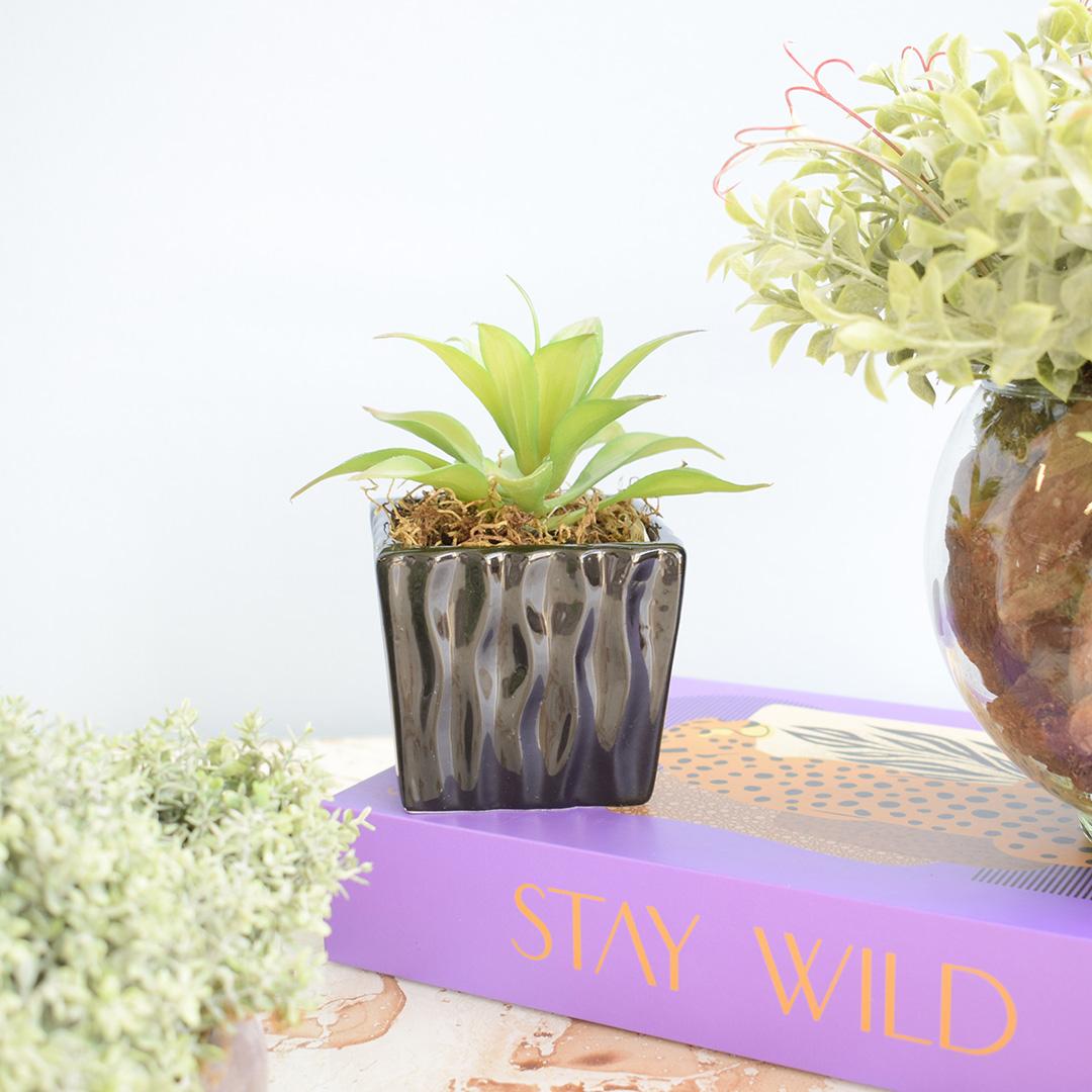 Arranjo de Suculenta Artificial no Vaso de Cerâmica Preto | Formosinha