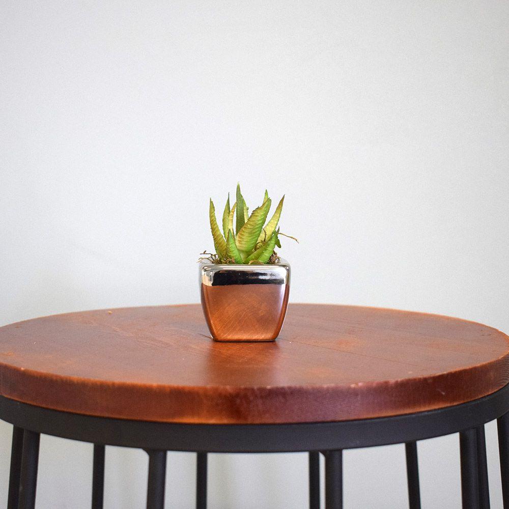 Arranjo de Suculenta Artificial no Vaso Prateado|Linha Permanente Formosinha