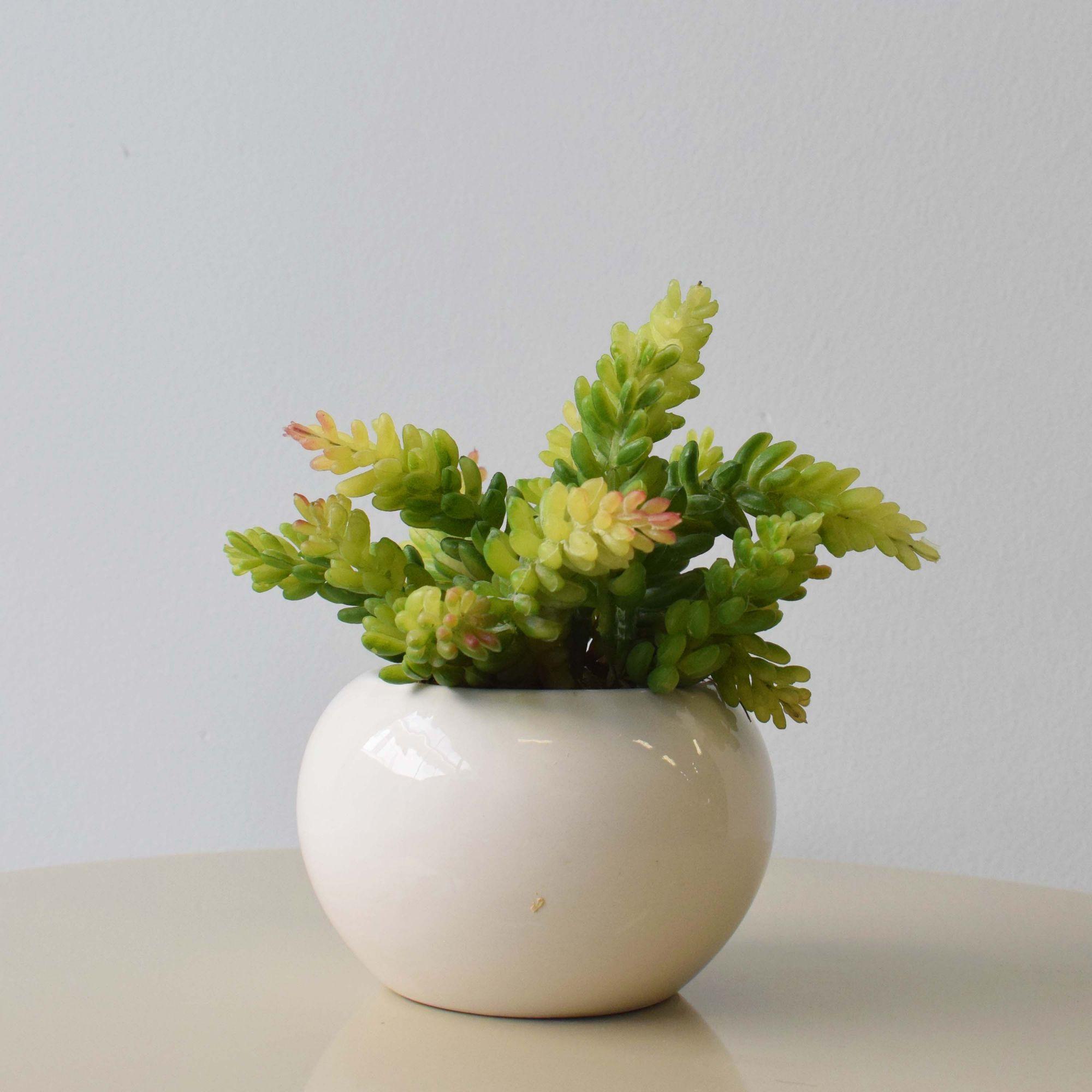 Flores artificiais Arranjo de Suculenta no Vaso de Cerâmica Branco|Linha permanente Formosinha