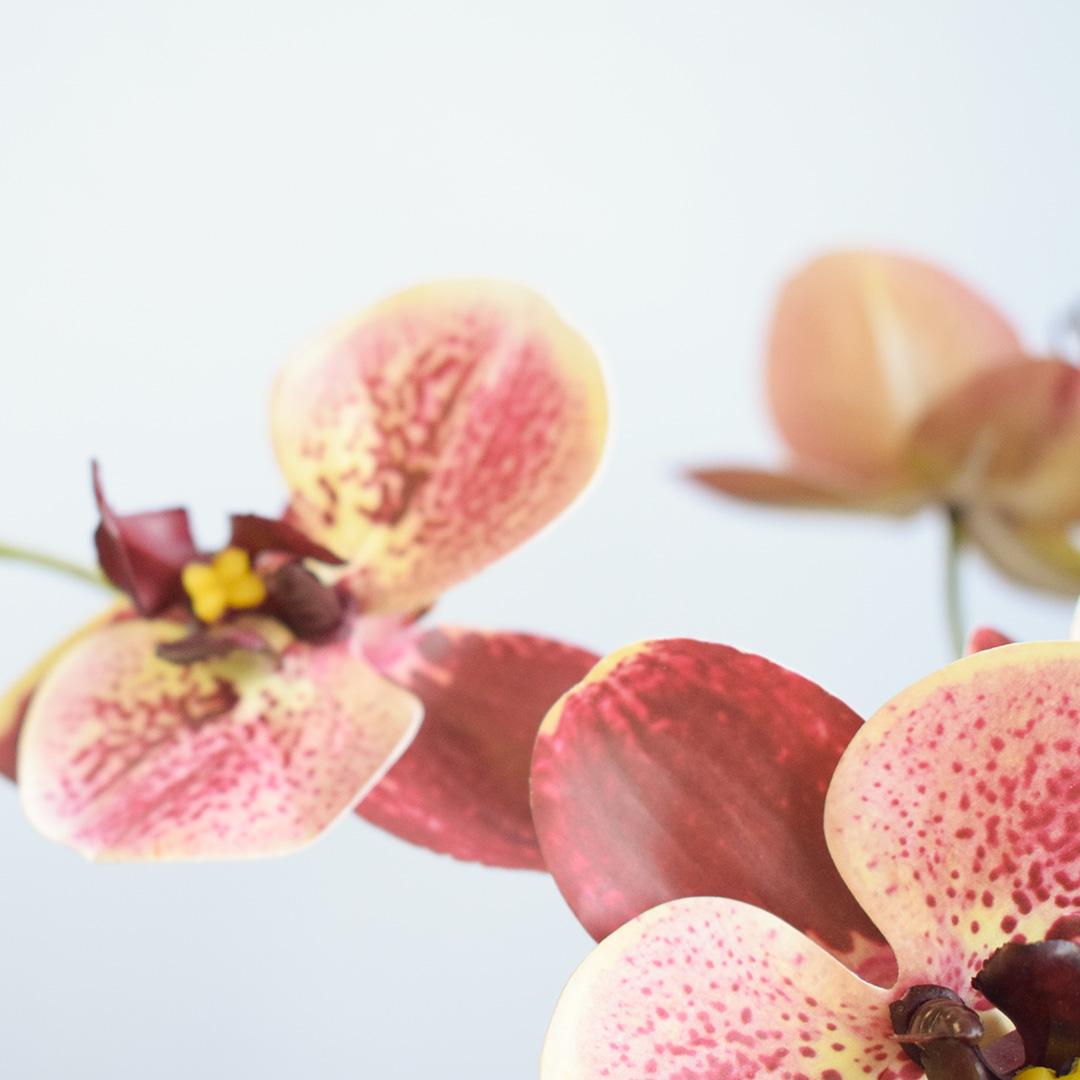 Arranjo Flor Artificial Orquídeas Coral no Vaso Rose Gold | Formosinha