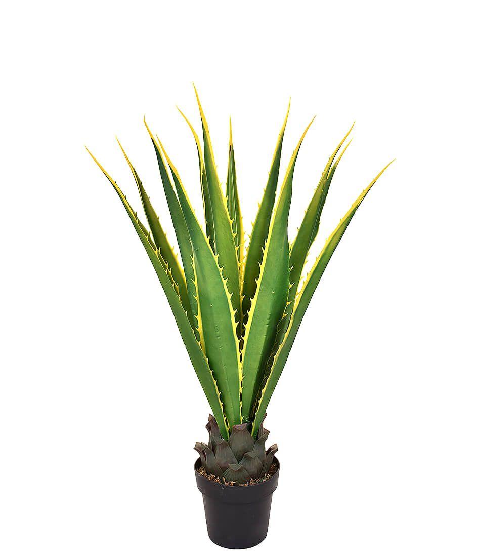 Árvore Aloe 105 cm