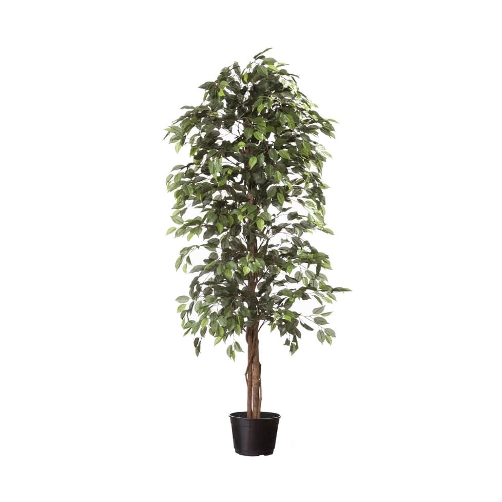 Árvore Artificial Ficus 2m | Linha Permanente Formosinha