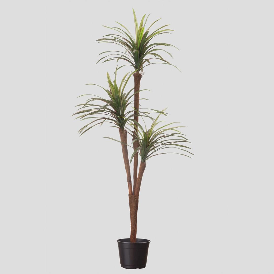 Árvore Artificial Yucca X3 Toque Real | Linha Permanente Formosinha
