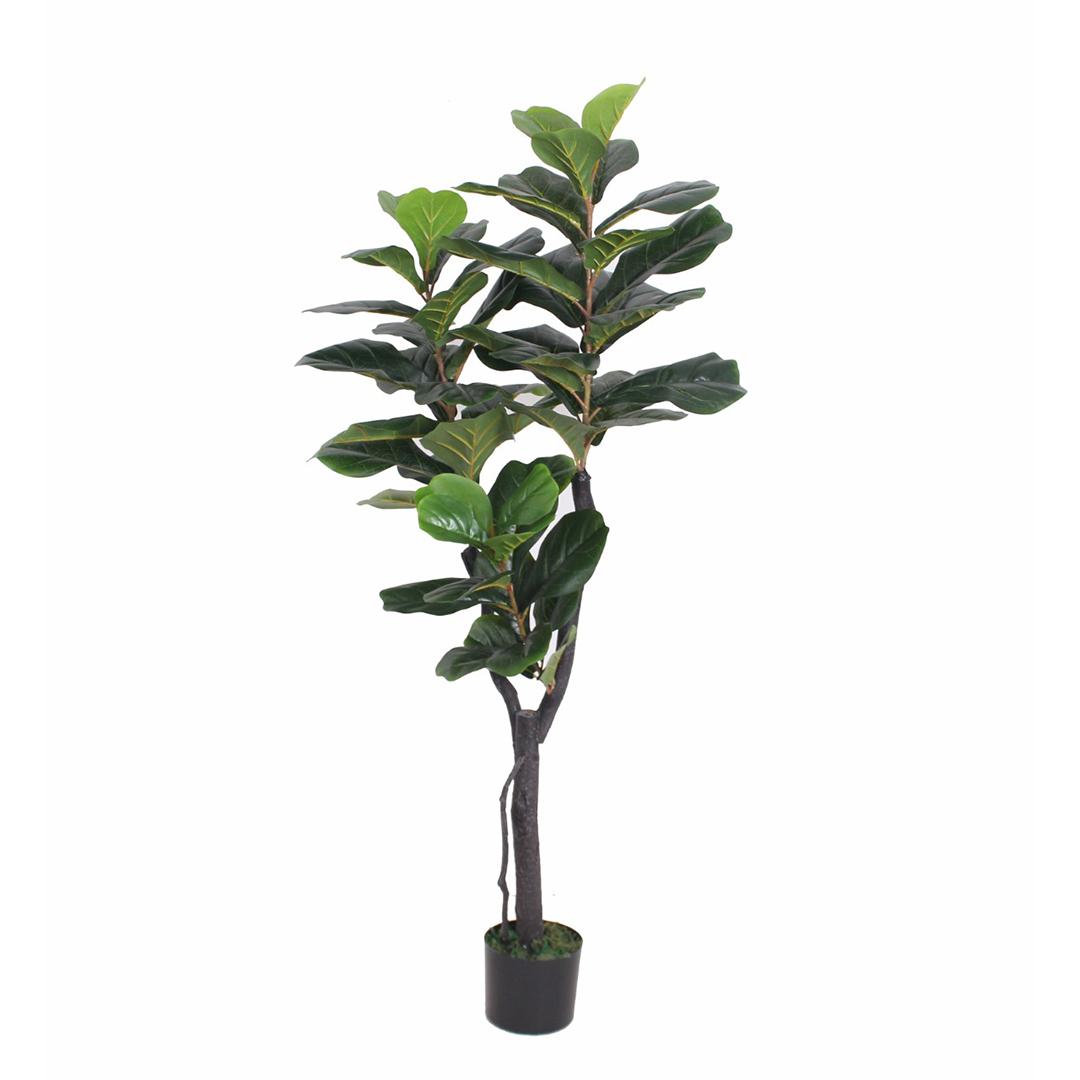 Arvore Ficus Lyrata 150cm Toque Real
