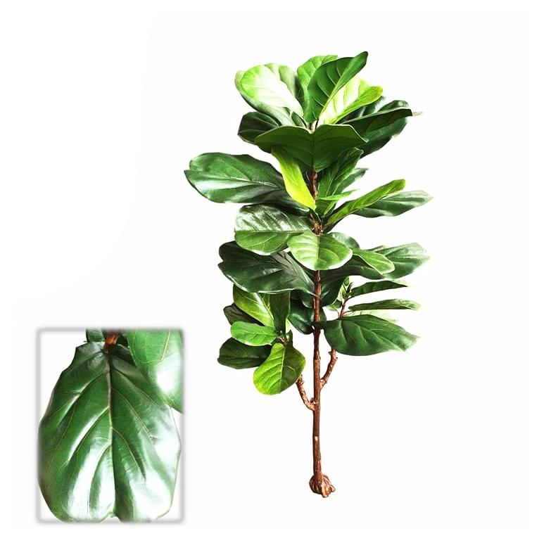 Árvore Ficus Lyrata Toque Real 125cm