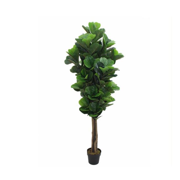 Árvore Ficus Lyrata Toque Real 180cm