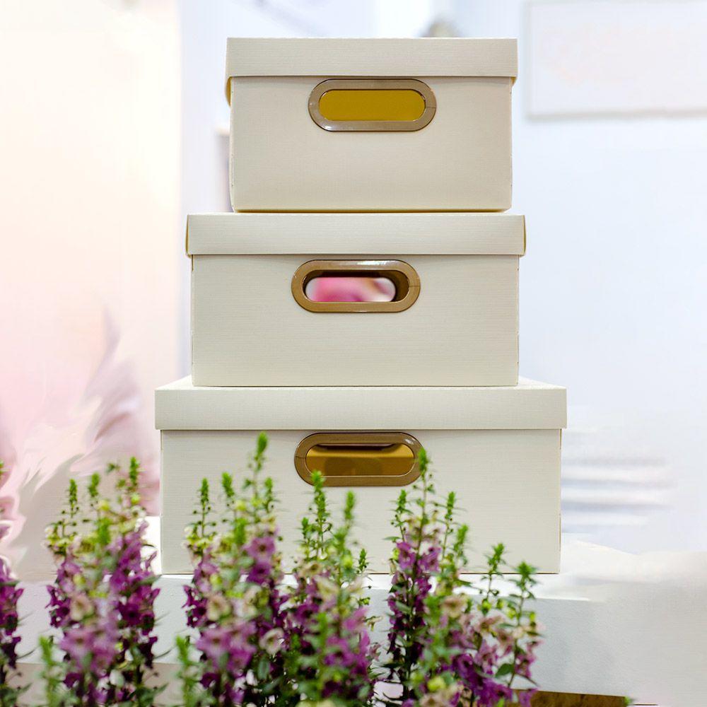 Caixa Organizadora Creme Grande | Linha Organize Formosinha