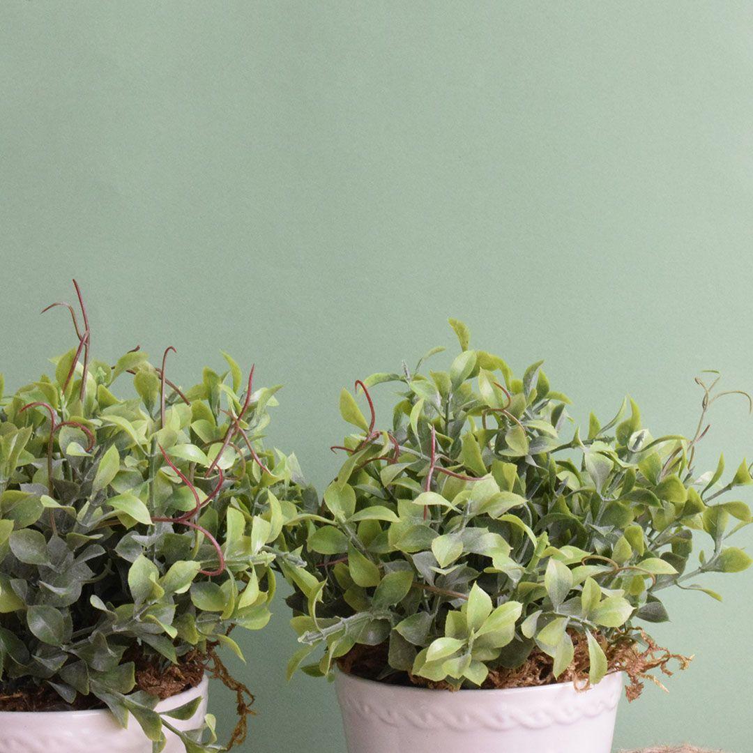 Flores Artificiais Conjunto com Dois Arranjos de Folhagem Artificial  Linha permanente Formosinha