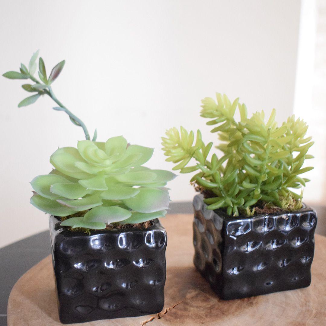 Flores Artificiais Conjunto com Dois Arranjos de Suculentas Artificial |Linha permanente Formosinha
