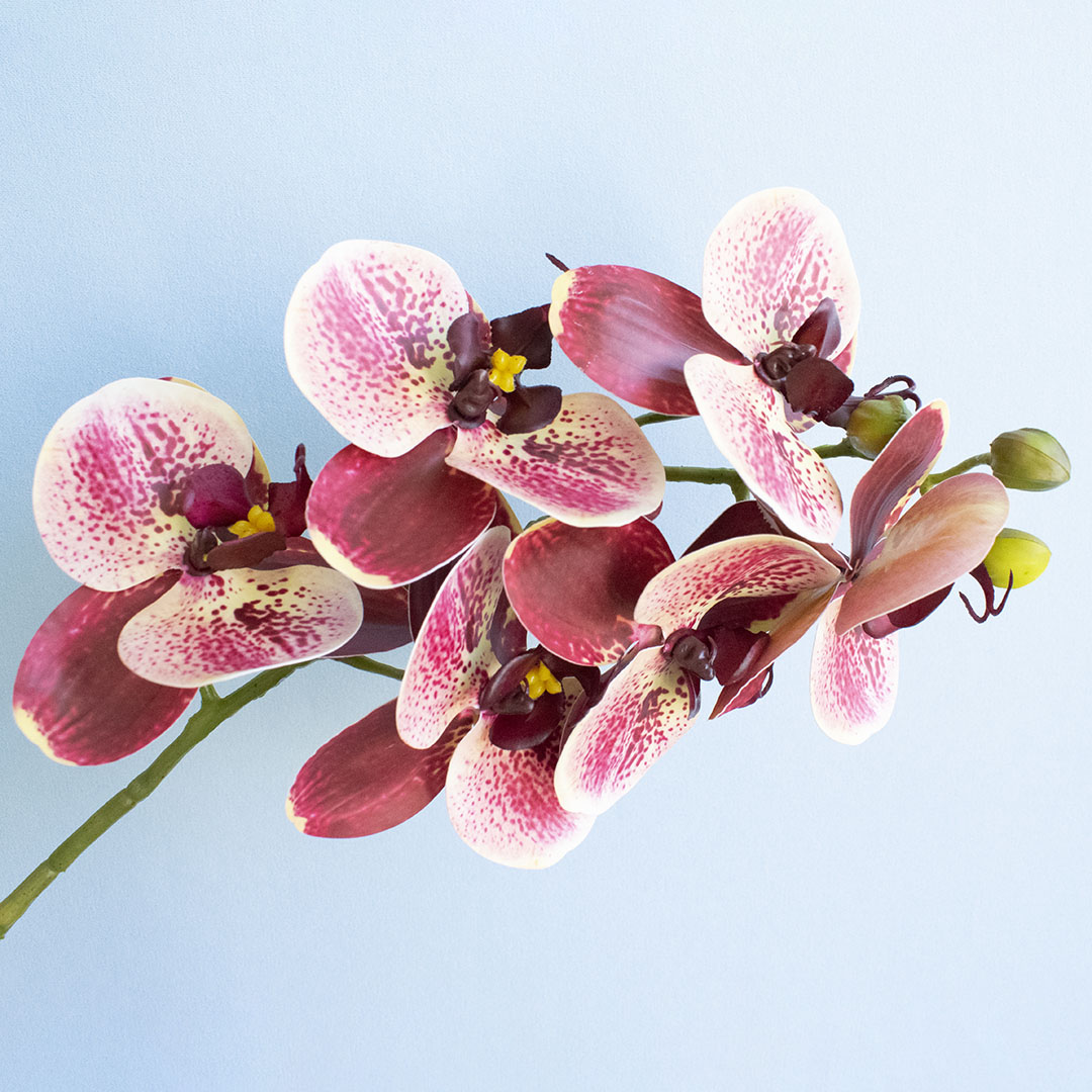Flores Artificiais Haste de Orquídea Toque Real Coral|Linha permanente Formosinha