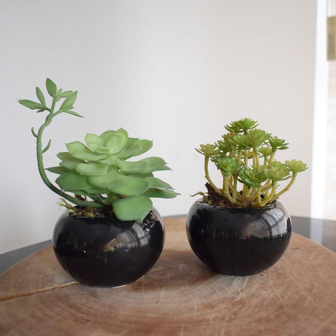 Flores Artificiais Kit com Dois Arranjos de Suculentas Permanentes | Linha permanente Formosinha