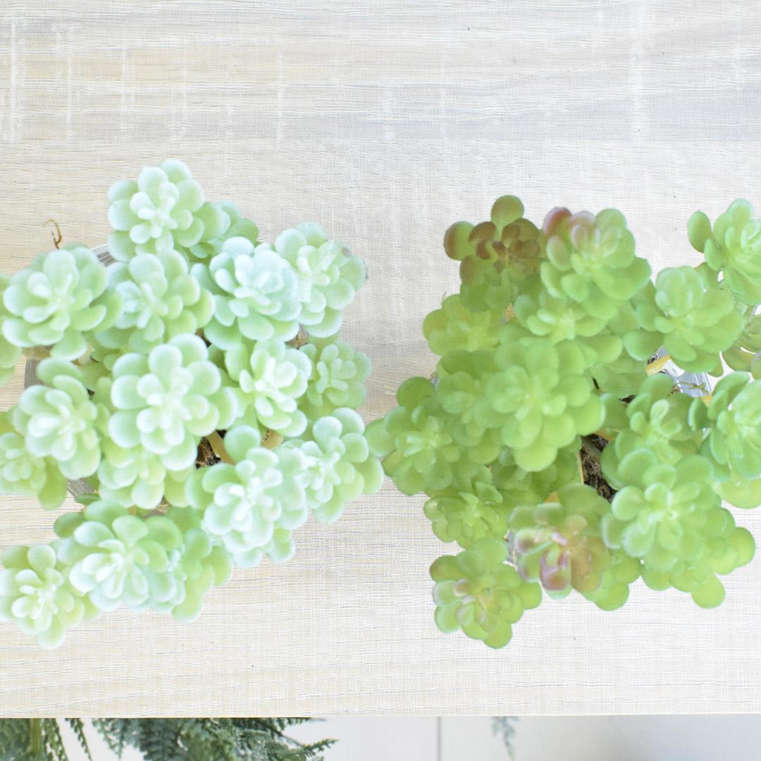 Flores Artificiais Kit com Duas Suculentas Permanentes no Vaso de Vidro |Linha permanente Formosinha
