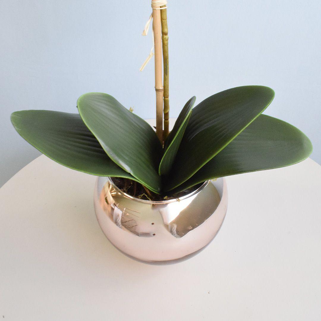 Folha de Orquídea Artificial Phalaenopsis com Cinco Folhas e Raiz