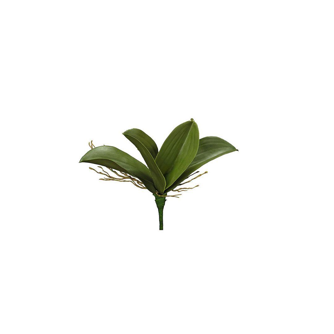 Folha de Orquídea Artificial Phalaenopsis com Quatro Folhas e Raiz