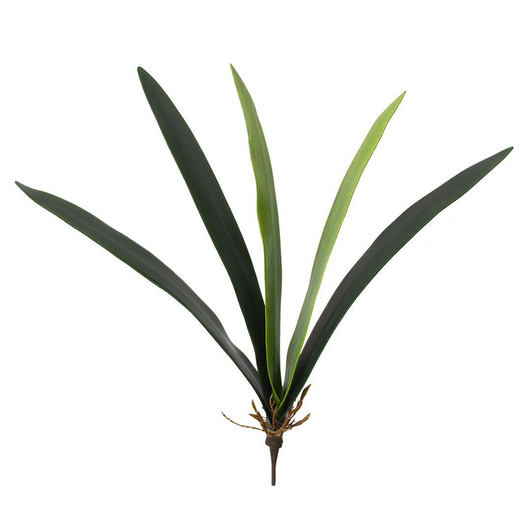 Folha de Orquídea Artificial X 5 Cymbidium