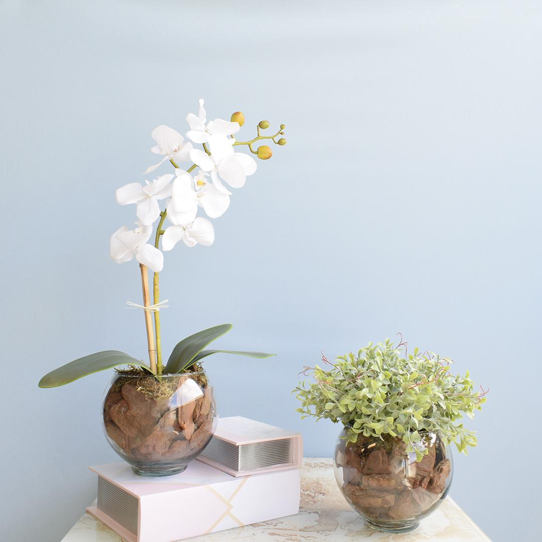 Kit com 2 Arranjos Flor Artificial Orquídea Branca e Peperômia no Vaso de Vidro