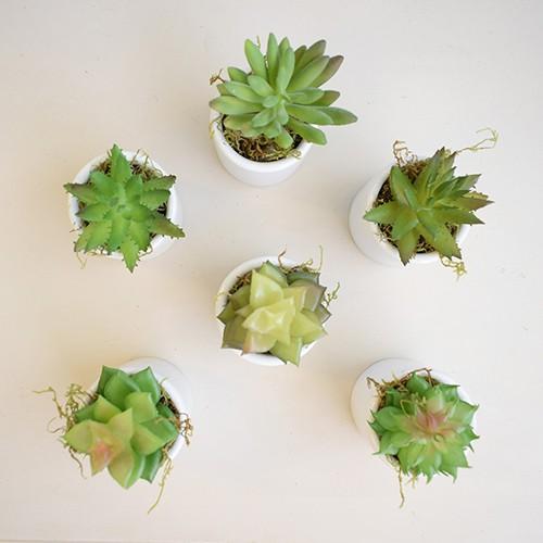 Kit com 6 Arranjos Artificial de Mini Suculentas no Vaso Branco|Linha Permanente Formosinha