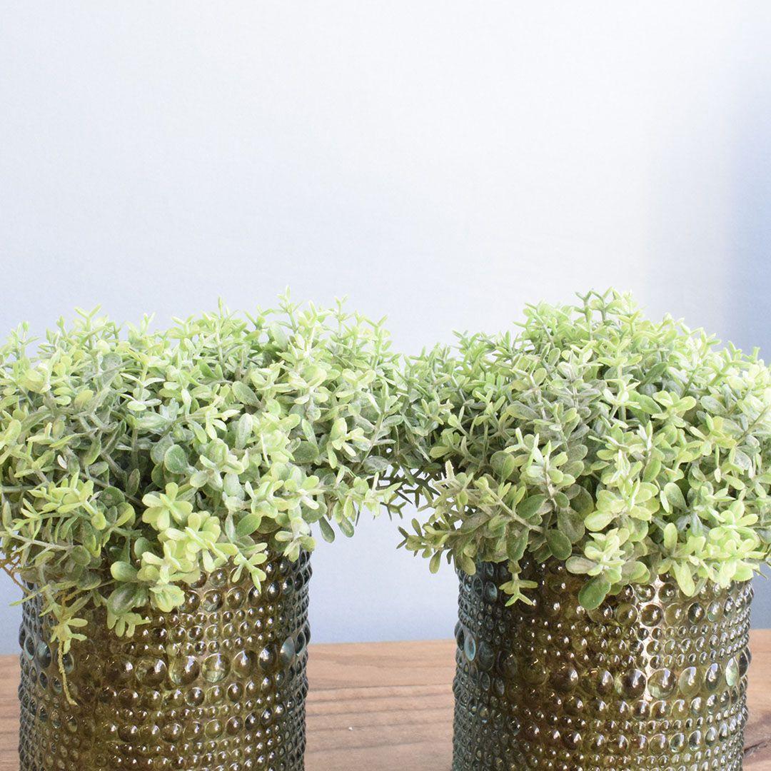 Arranjo de Folhagem no Vaso de Vidro Verde - Kit com Dois Arranjos |Linha permanente Formosinha