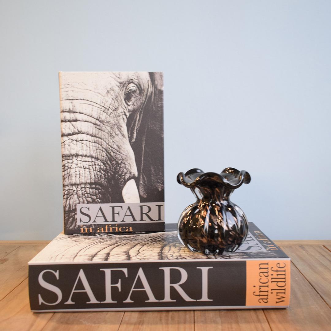 Kit de Caixas Livros de Madeira Safari