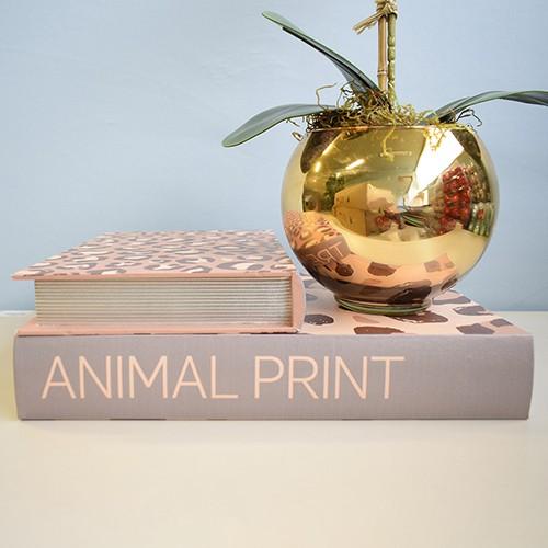 Kit de Caixas Livros Onça Trend Hunt