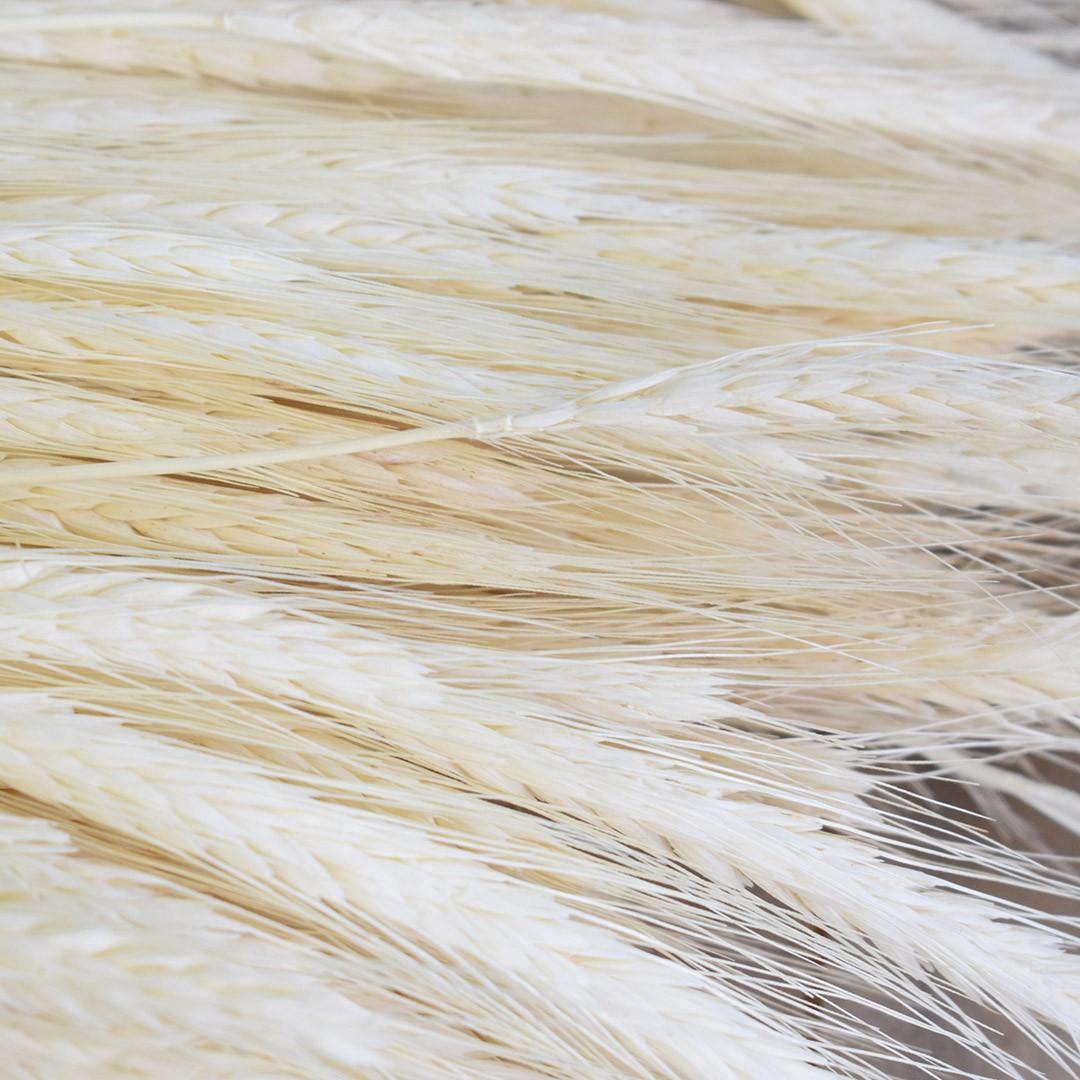 Maço de Trigo Envelhecido | Linha Permanente Formosinha