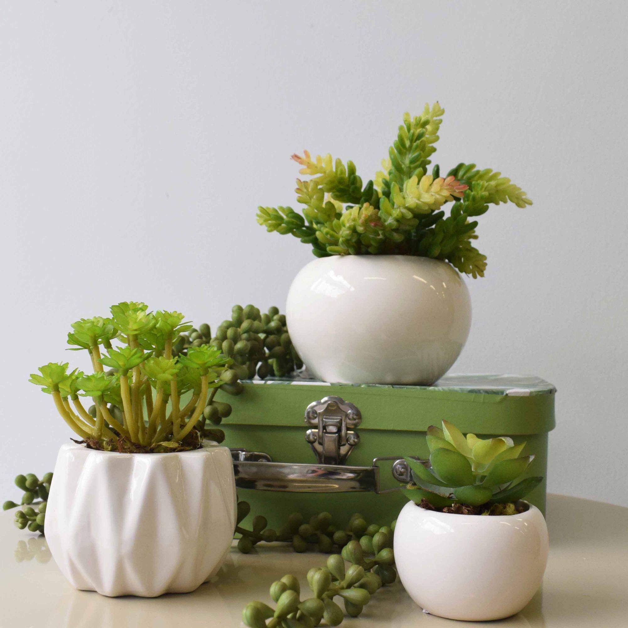 Flores artificiais Arranjo de Flores Suculenta no Vaso de Cerâmica|Linha permanente Formosinha