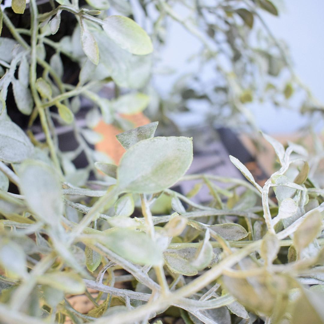 Pendente Folhas Verdes Artificial  Linha Permanente Formosinha