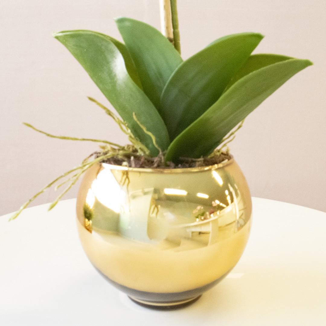 Vaso de Flores Dourado Redondo 13 cm | Linha Vasos Decorativos Formosinha