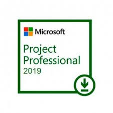 PROJECT PROFESSIONAL 2019 ESD 2019 ESD