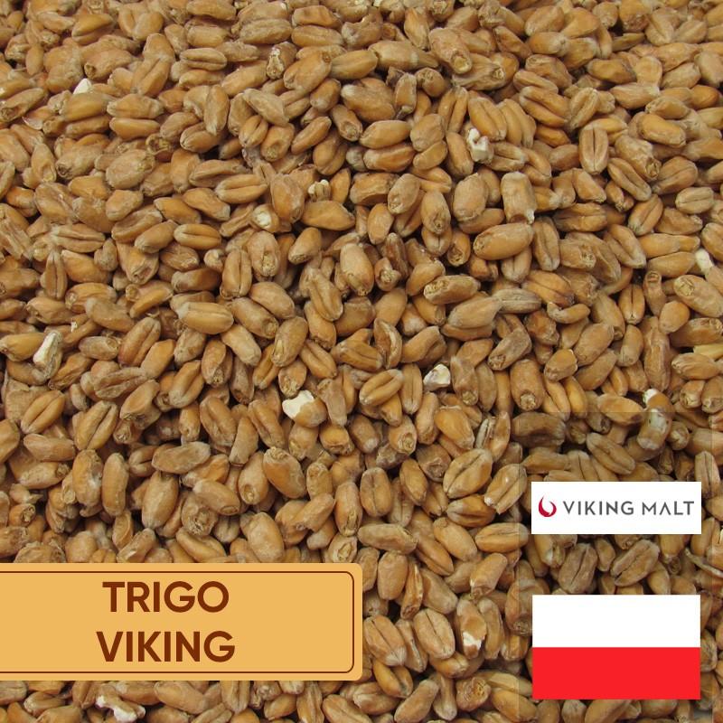 Malte Trigo Viking 100g