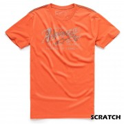 Camiseta Alpinestars Scratch